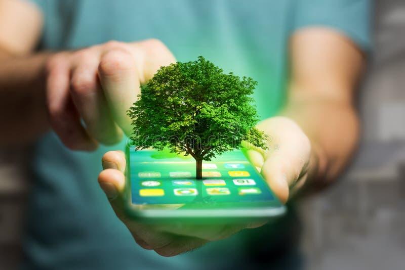 Uscire verde di uno smartphone - concetto dell'albero di ecologia immagine stock