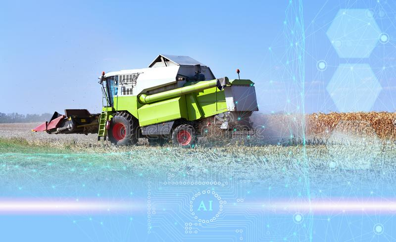 The use of artificial intelligence in agriculture, harvesting with a combine and increasing productivity, business growth.  stock image
