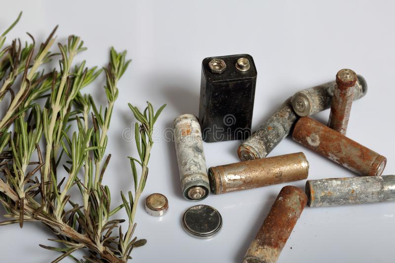 Used batteries and a branch of greens. Recycling waste batteries. Environmental Protection. Earth Day.  royalty free stock image