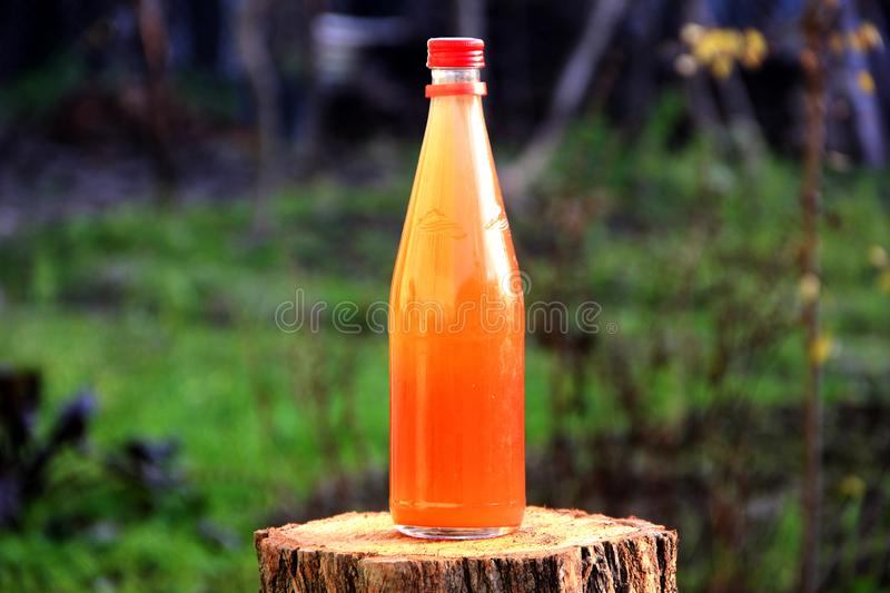 Grape pickle beverage bottle natural green stock image