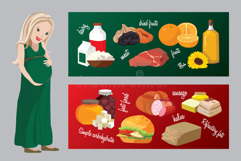 Useful and harmful foods during pregnancy royalty free illustration
