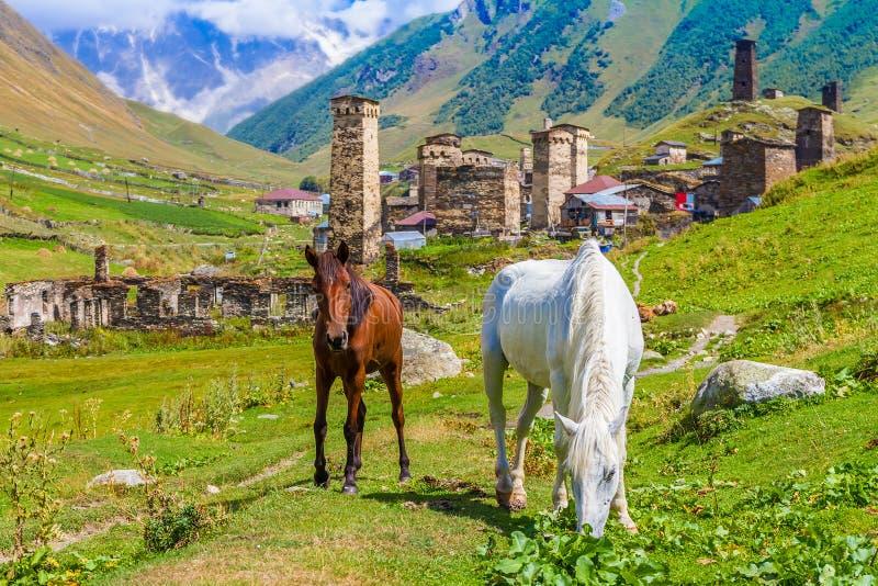 Ushguli, Svaneti superiore, Georgia, Europa fotografie stock