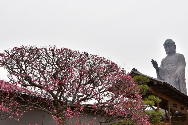 Ushiku Daibutsu ? a est?tua budista a mais alta imagem de stock royalty free