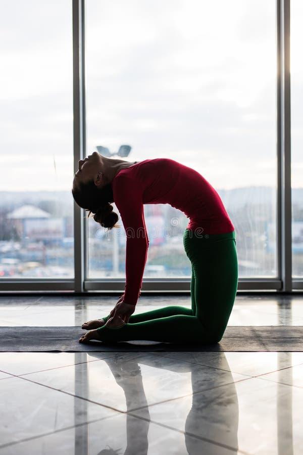 Ushtrasana. Beautiful yoga woman practice in a big window. Hall background. Yoga concept royalty free stock photo