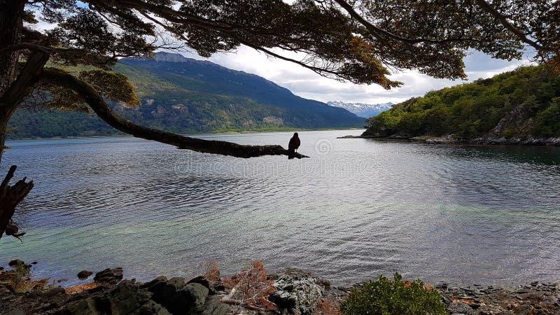 Ushuaia στοκ εικόνες