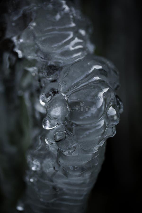 Usine avec de la glace photo libre de droits