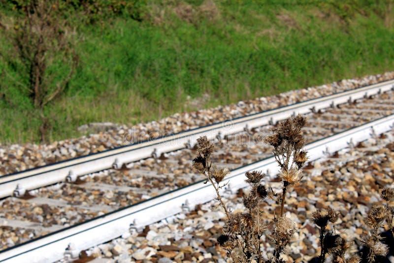Usine défraîchie devant une ligne ferroviaire photographie stock