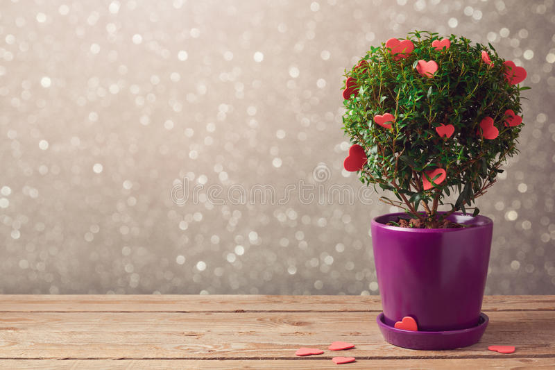 Usine d'arbre avec des coeurs sur la table en bois au-dessus du fond de bokeh Concept du jour de Valentine image libre de droits