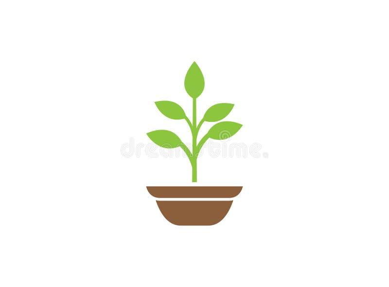 Usine dans le pot avec quelques feuilles pour l'illustration de conception de logo illustration de vecteur