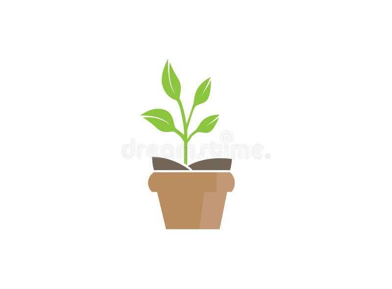 Usine dans le pot avec quelques feuilles pour la conception de logo illustration stock
