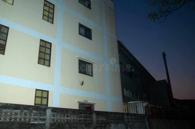 Usine de passage de vol de chauve-souris une vieille et un vieux bâtiment résidentiel au crépuscule photographie stock