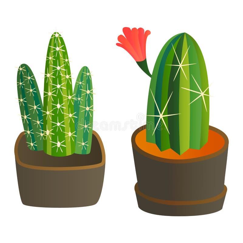 Usine mignonne de cactus de bande dessinée illustration libre de droits