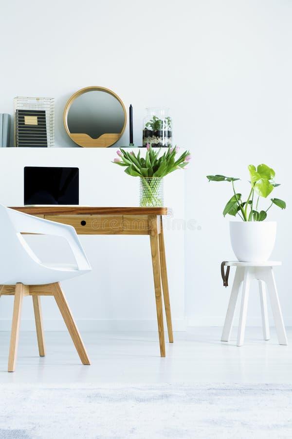 Usine sur des selles à côté de bureau en bois avec l'ordinateur portable dans la maison blanche  photos stock