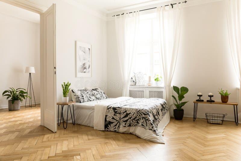 Usine sur la table à côté du lit dans l'intérieur blanc de l'espace ouvert avec la victoire photographie stock libre de droits
