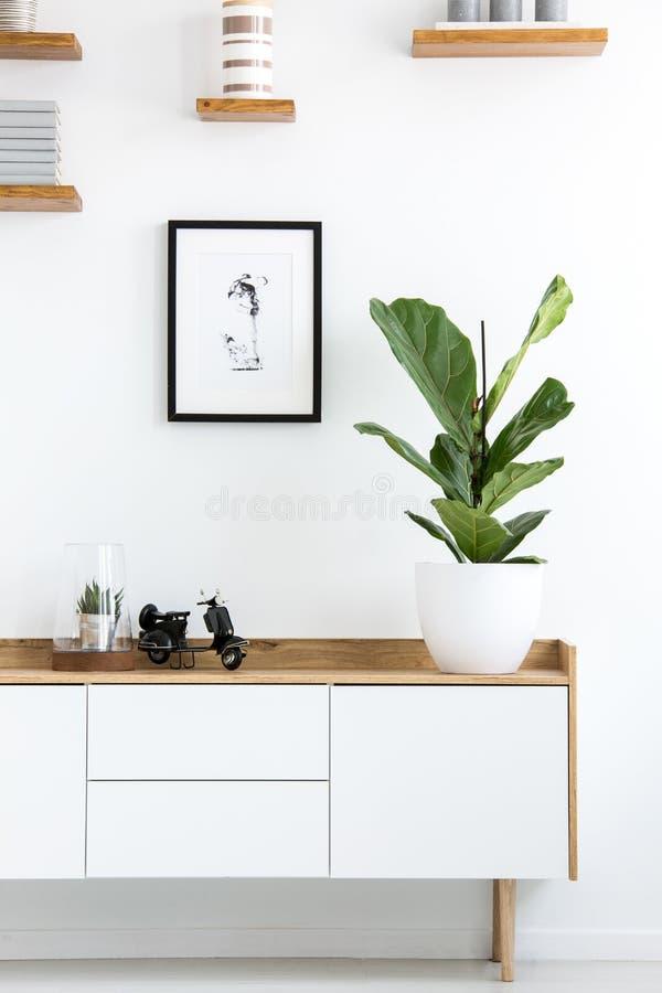 Usine sur le placard en bois dans l'intérieur blanc de salon avec le simp images stock