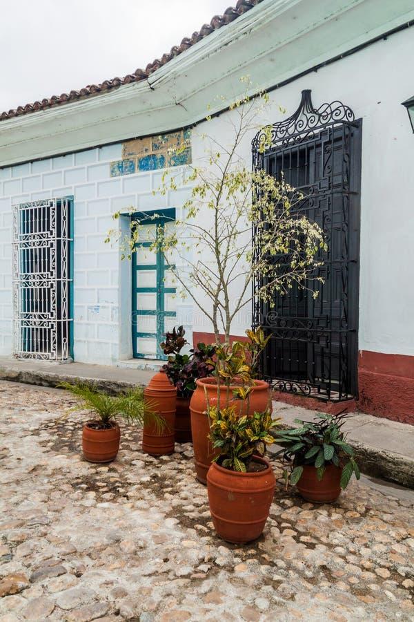 Usines décoratives à une rue pavée en cailloutis dans Sancti Spiritus, Cu photos libres de droits