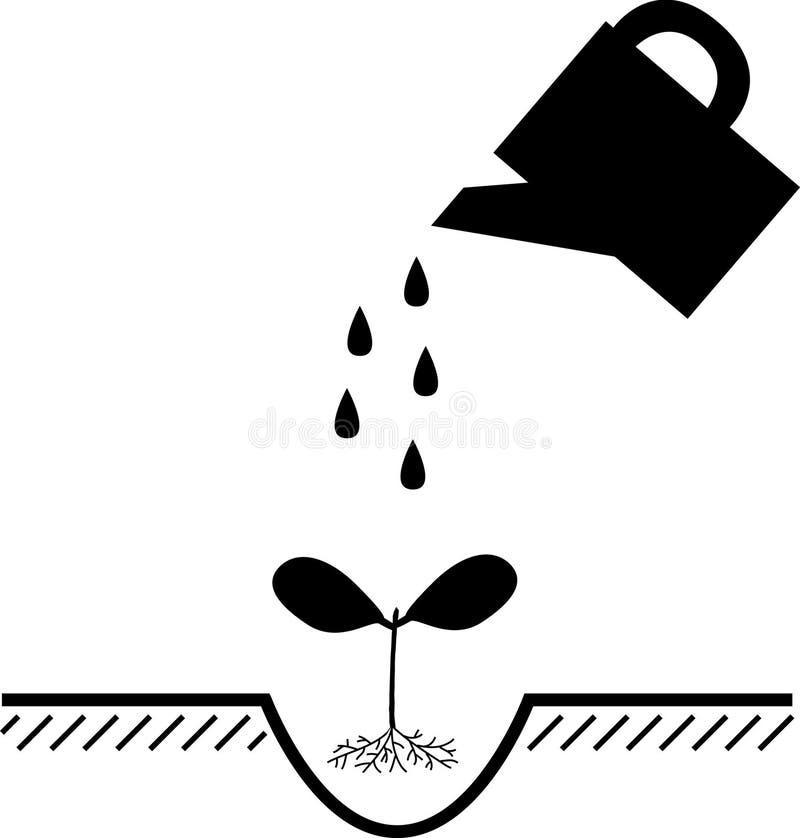 Usines d'arrosage à la plantation illustration de vecteur