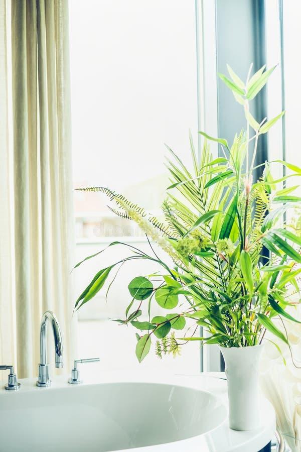 Usines d'intérieur vertes de salle de bains dans le vase blanc, intérieur de maison photos libres de droits