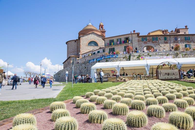 Usines de cactus placées sous l'entrée principale du del de Castiglione image stock