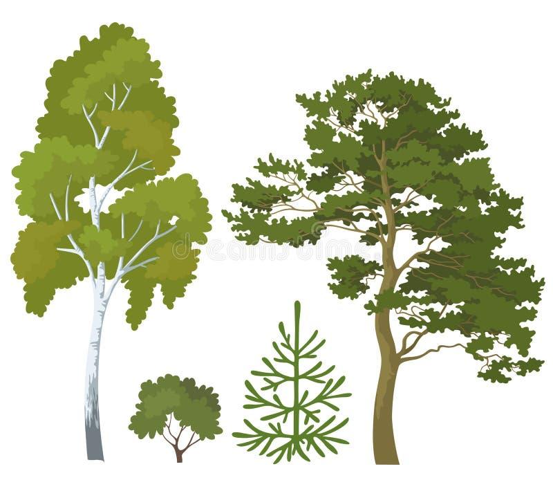 Usines de forêt réglées illustration de vecteur