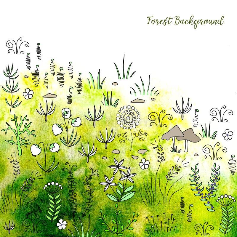 Usines et herbe tirées par la main de forêt sur le fond frais d'aquarelle illustration de vecteur