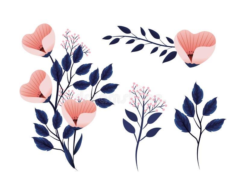 Usines exotiques réglées de fleurs avec des feuilles de branches de nature illustration stock