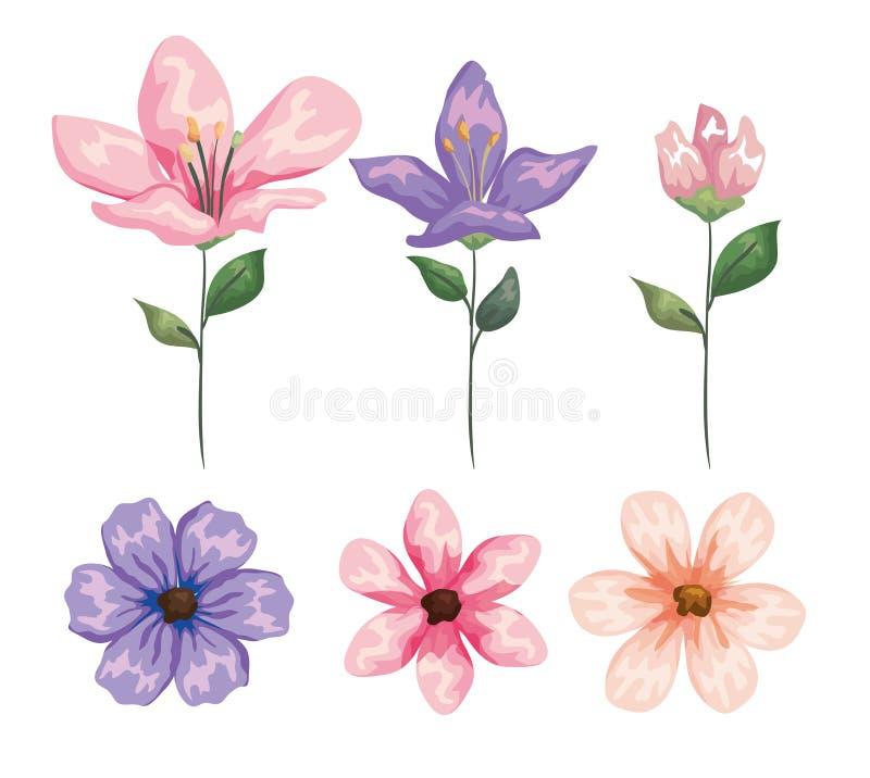 Usines exotiques réglées de fleurs avec des feuilles de nature illustration de vecteur