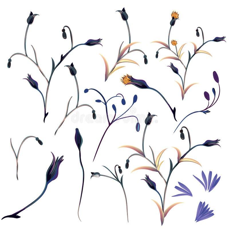 Usines florales de vecteur réglées dans le style élégant illustration de vecteur