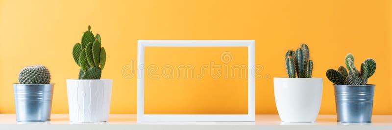 Usines mises en pot de maison de cactus sur l'étagère blanche contre le mur coloré par moutarde en pastel et moquerie de cadre de photographie stock