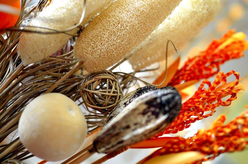 Usines sèches de décoration image libre de droits