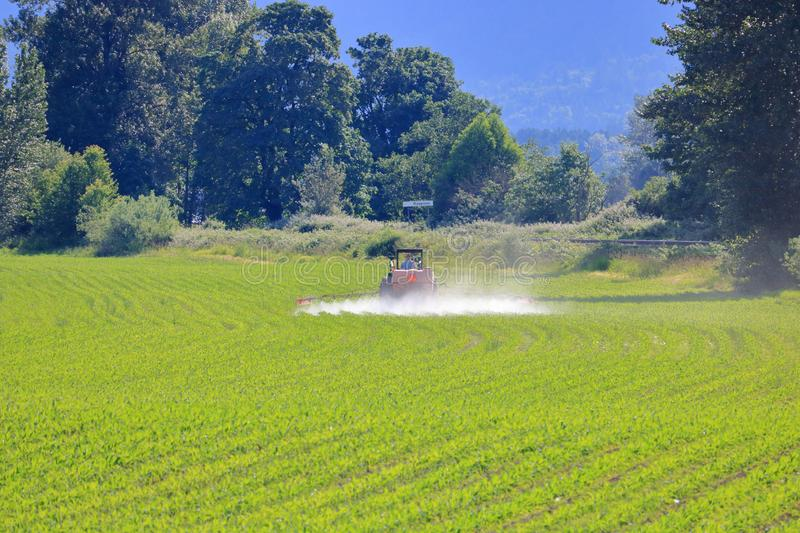 Using portable tanks to water crops stock photography