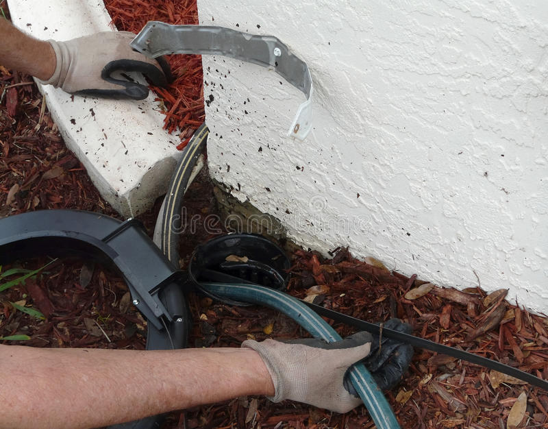 Using Sewer Rod to Remove Blockage. Homeowner uses an encased sewer snake or rod to clear a blockage of dirt and leaves in the PVC pipe out to a point where stock image