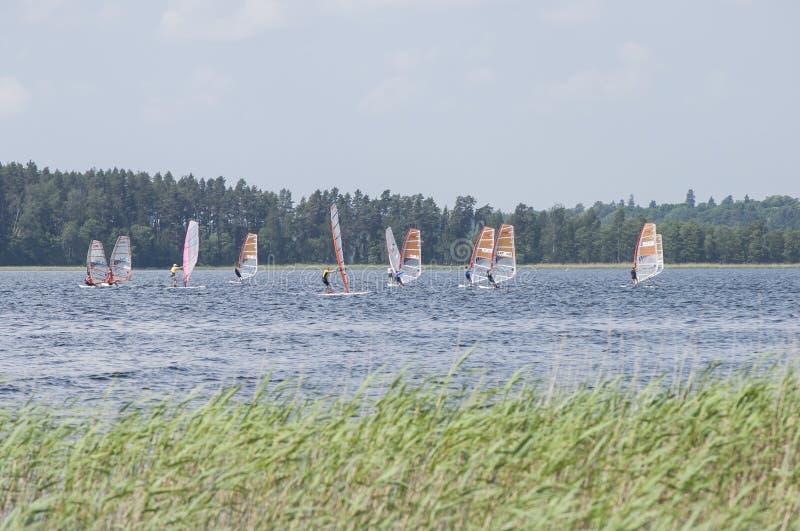 Usma jezioro Latvia, Czerwiec, - 15, 2019: Wiatrowi surfingowowie turniejowi na jeziornym Usma obrazy royalty free