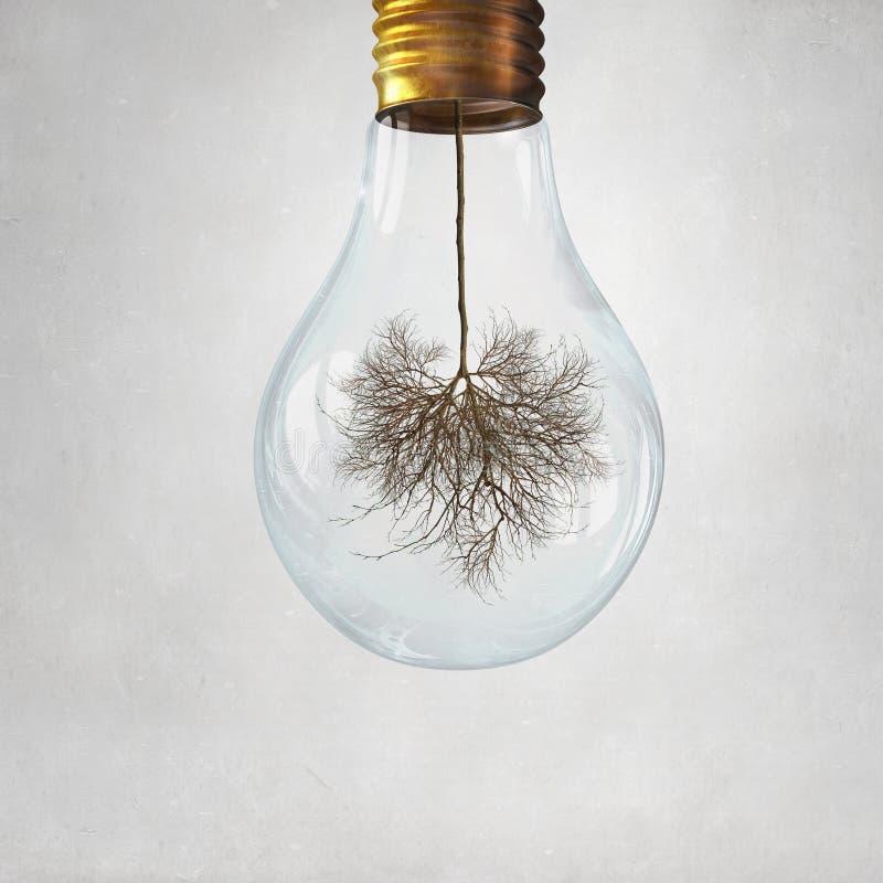 Uso de energía alternativa fotografía de archivo