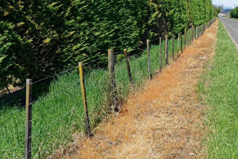 Uso del herbicida en un borde del borde de la carretera de Nueva Zelanda imagenes de archivo