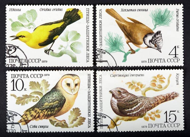 USSR - OKOŁO 1979: serie znaczki drukujący w USSR, przedstawienie ptaki OKOŁO 1979, obraz stock