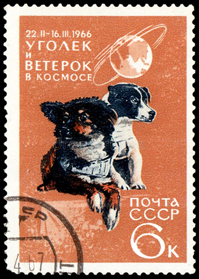 """USSR - OKOŁO 1966: stempluje, drukował w USSR i Weterok w przestrzeni, przedstawienia dwa psa z wpisowym """"Ugolek, 1966† fotografia stock"""