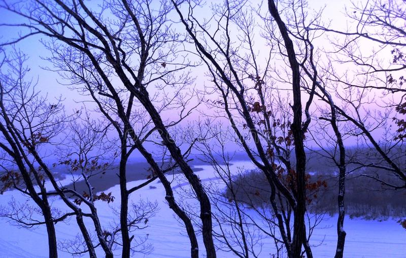 The Ussuri River at sunset in January stock photography