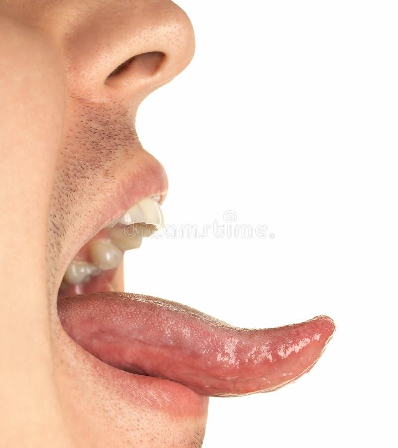 usta, język. zdjęcia stock