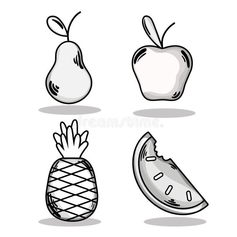 Ustalone wyśmienicie i świeże tropikalne owoc royalty ilustracja