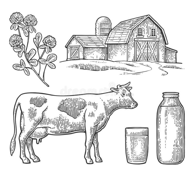 Ustalony mleka gospodarstwo rolne Krowy głowa, koniczyna, szkło i butelka, ilustracji