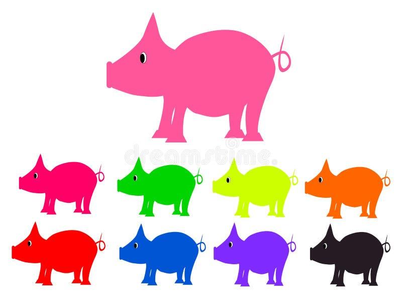 Ustawia świnie różni kolorów piggys ilustracja wektor