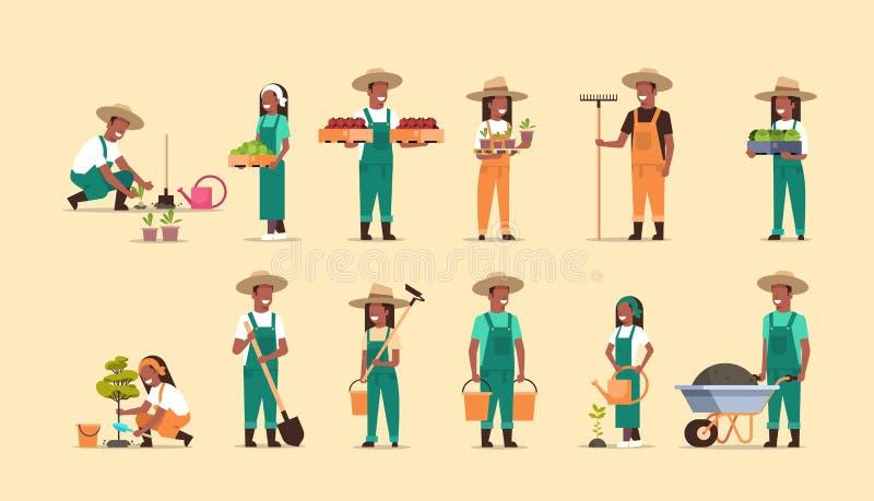 Ustawia amerykanin afrykańskiego pochodzenia rolników trzyma różnego uprawia ziemię wyposażenie zbiera flancowań warzyw m royalty ilustracja