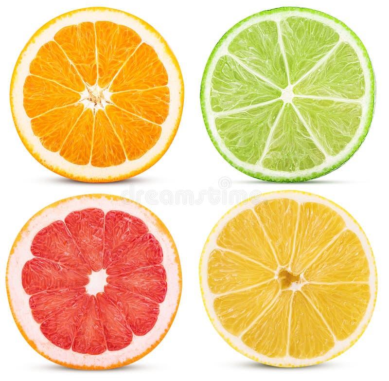 Ustawia cytrus owoc, cięcie w przyrodniej pomarańcze, cytryna, wapno, grapefruitowy zdjęcia stock