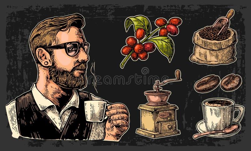 Ustawia kawę Modnisia barista trzyma filiżankę, worek z, filiżankę, gałąź z liściem i jagody, drewnianą miarką i fasolami, ilustracji