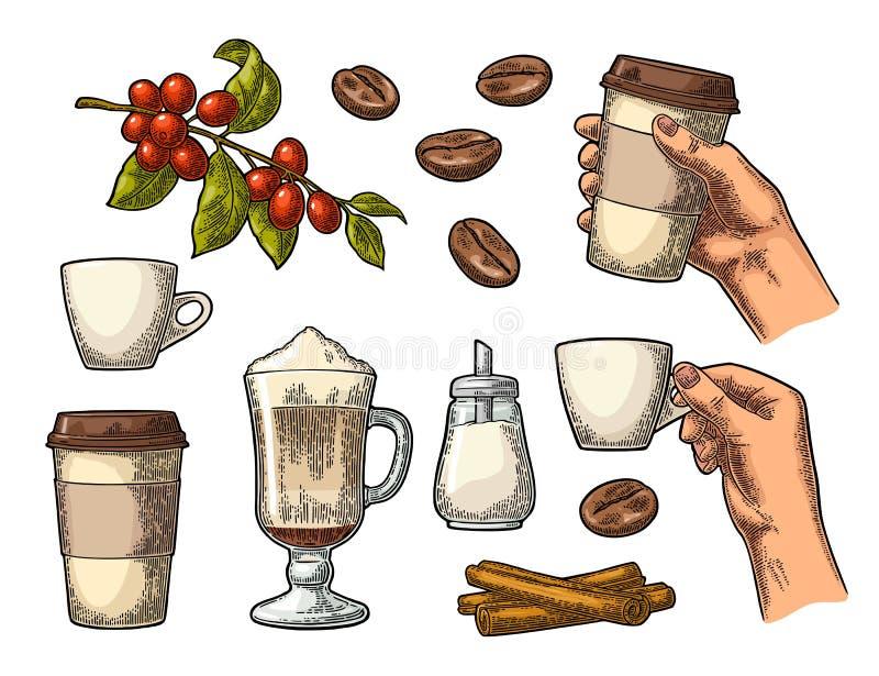 Ustawia kawę Szklany latte, ręka chwyta filiżanka Gałąź z fasolami ilustracja wektor