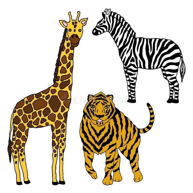 Ustawia przyrody ?yrafy zwierz?cej tygrysiej zebry projekta wektorow? ilustracyjn? r?k? rysuj?c? ilustracja wektor