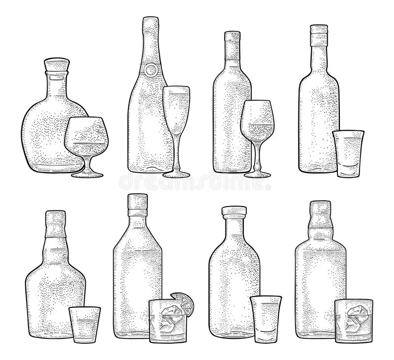 Ustawia szkła i butelki whisky, wino, tequila, koniak, szampan Wektorowy rytownictwo ilustracja wektor