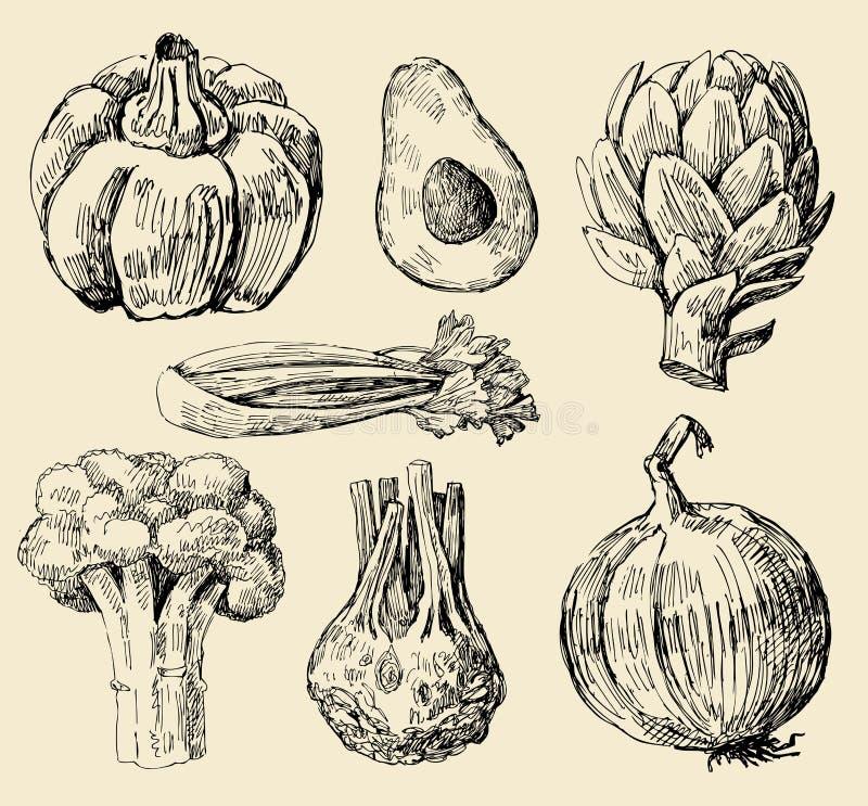 ustawia warzywa ilustracja wektor