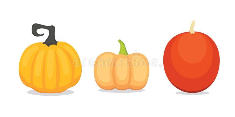 Ustawia wektorowej kreskówki bani odizolowywającej Jesieni rośliny jarzynowy jarosz ilustracji